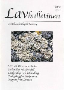 Lavbulletinen 2011-2
